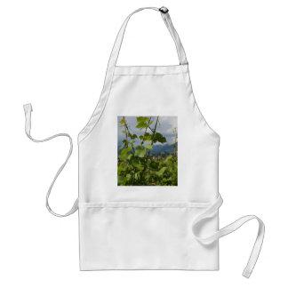 vineyard adult apron