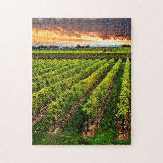 Vineyard at sunset jigsaw puzzle