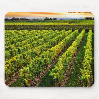 Vineyard at sunset mouse pad
