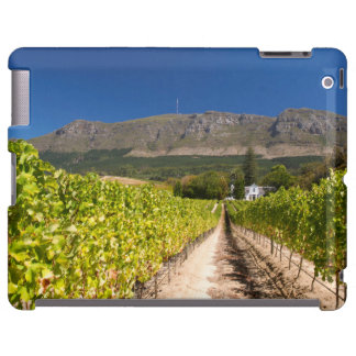 Vineyard, Cape Town, Western Cape, South Africa 2