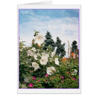 Vineyard Garden Card