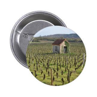 vineyard in Burgundy France Button