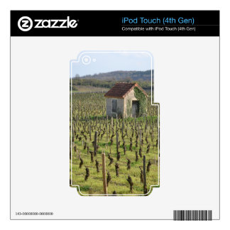 Vineyard in Burgundy France Decal For iPod Touch 4G