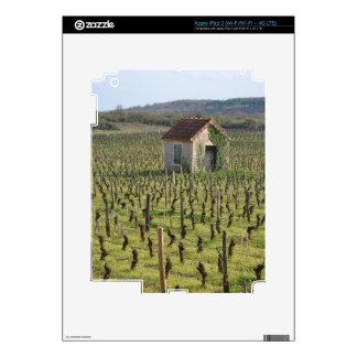 Vineyard in Burgundy France iPad 3 Skin