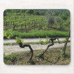 Vineyard in Chianti Region of Italy Mouse Mats