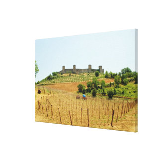 Vineyard in front of a fort, Monteriggioni, Canvas Print