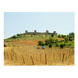 Vineyard in front of a fort, Monteriggioni, Postcard