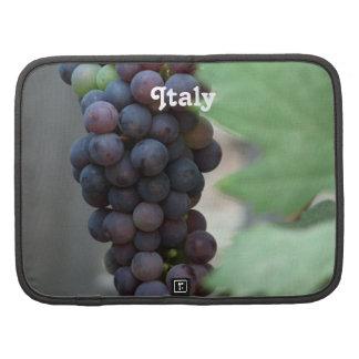 Vineyard in Italy Planners