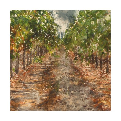 Vineyard in napa valley california wood wall decor zazzle - Napa valley home decor decor ...