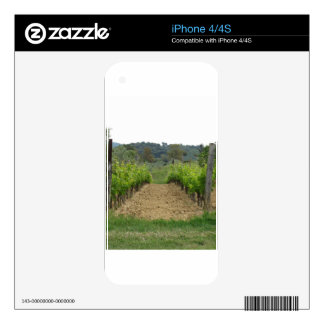 Vineyard in spring . Tuscany, Italy Decal For The iPhone 4