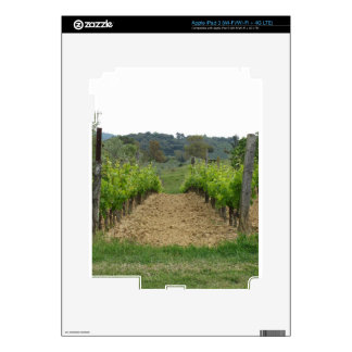 Vineyard in spring . Tuscany, Italy Skins For iPad 3