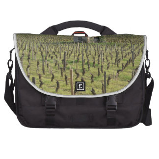 Vineyard in the French countySide Laptop Bags