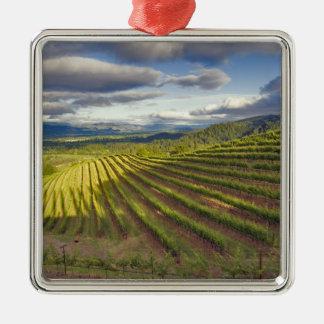 Vineyard. Napa Valley. Napa. Napa County, Metal Ornament
