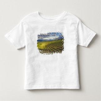 Vineyard. Napa Valley. Napa. Napa County, Toddler T-shirt