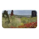 Vineyard near Montalcino, Tuscany, Italy iPhone 4 Cases
