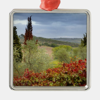 Vineyard near Montalcino, Tuscany, Italy Metal Ornament