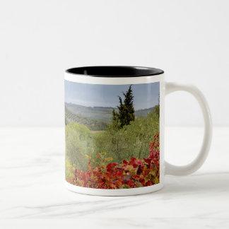 Vineyard near Montalcino, Tuscany, Italy Two-Tone Coffee Mug