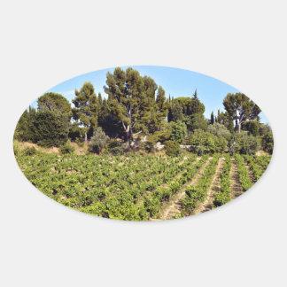 Vineyard of Le Castellet In France Oval Sticker