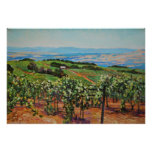 Vineyard Print