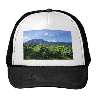 Vineyard southern BC, Canada Trucker Hat