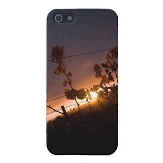 Vineyard Sunset Iphone Case