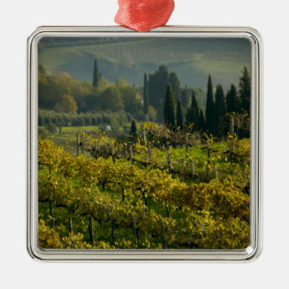 Vineyard, Tuscany, Italy Metal Ornament