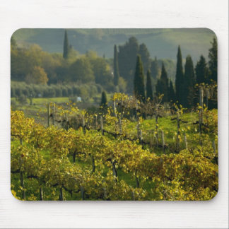 Vineyard, Tuscany, Italy Mouse Pad