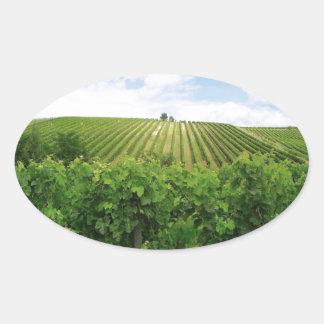 Vineyard - Vignoble (Bordeaux - France) 01 Oval Sticker