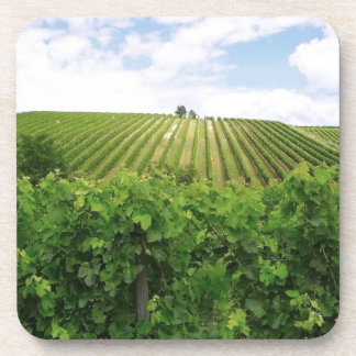 Vineyard - Vineyard (Bordeaux - France) 01 Drink Coaster