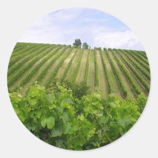 Vineyard - Vineyard (Bordeaux - France) 02 Classic Round Sticker