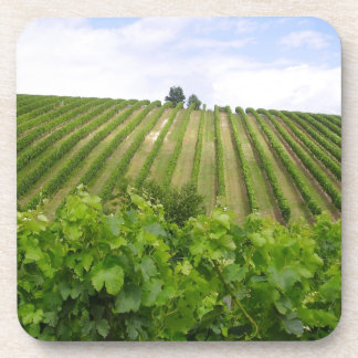 Vineyard - Vineyard (Bordeaux - France) 02 Beverage Coasters