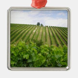 Vineyard - Vineyard (Bordeaux - France) 02 Metal Ornament