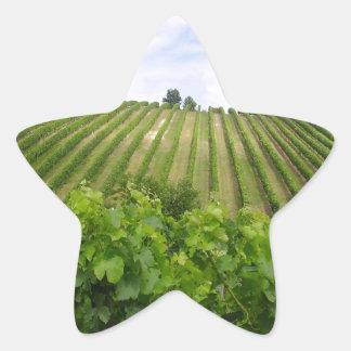 Vineyard - Vineyard (Bordeaux - France) 02 Star Sticker