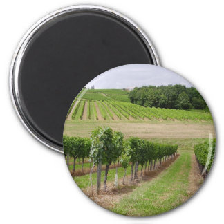 Vineyard - Vineyard (Bordeaux - France) 03 2 Inch Round Magnet