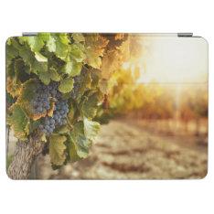 Vineyards At Sunset Ipad Air Cover at Zazzle