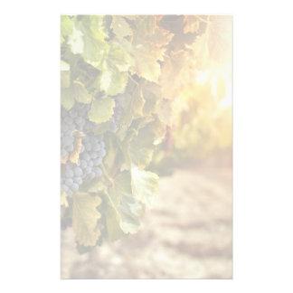 Vineyards At Sunset Stationery