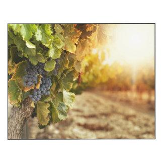 Vineyards At Sunset Wood Wall Art