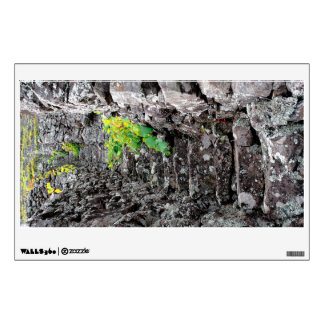 Vineyards in Azores islands Wall Decal