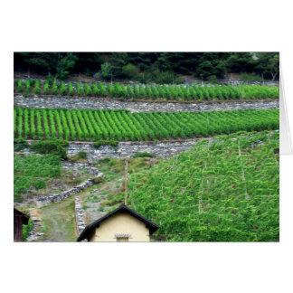 Vineyards in Switzerland Card