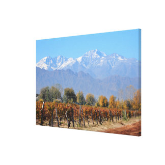 Vineyards In The Fall Of Mendoza, Argentina Canvas Print