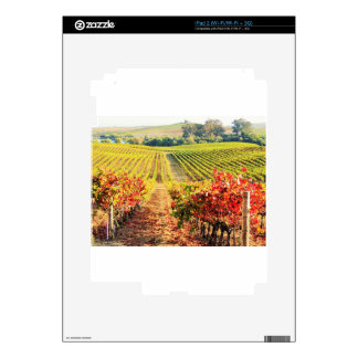VINEYARDS.JPG iPad 2 SKIN