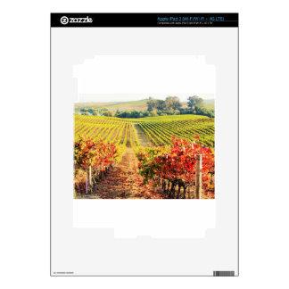 VINEYARDS.JPG SKINS FOR iPad 3