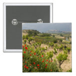 Vineyards near Laguardia, capital of La Rioja 2 Inch Square Button