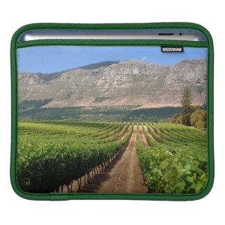 Vineyards Of Groot Constantia Wine Estate iPad Sleeve
