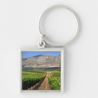Vineyards Of Groot Constantia Wine Estate Keychain