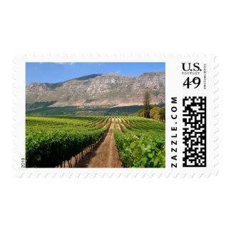 Vineyards Of Groot Constantia Wine Estate Postage Stamp