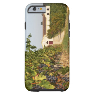 Vineyards, petit verdot vines and the winery in tough iPhone 6 case