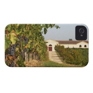 Vineyards, petit verdot vines and the winery in iPhone 4 case