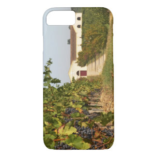 Vineyards, petit verdot vines and the winery in iPhone 7 case