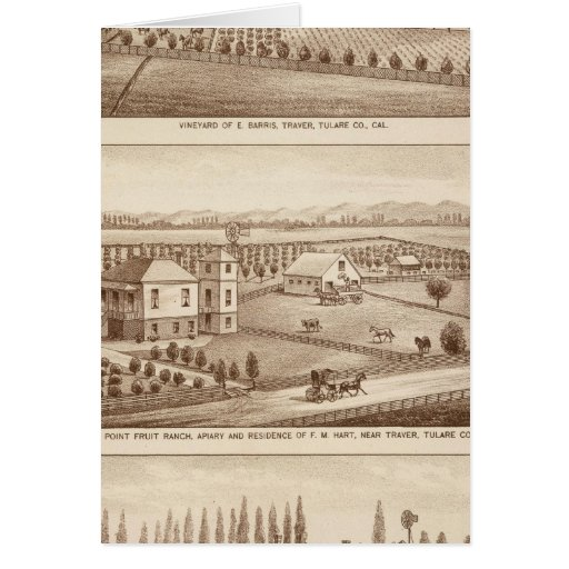 Vineyards, ranches, Tulare Co, Calif Greeting Cards